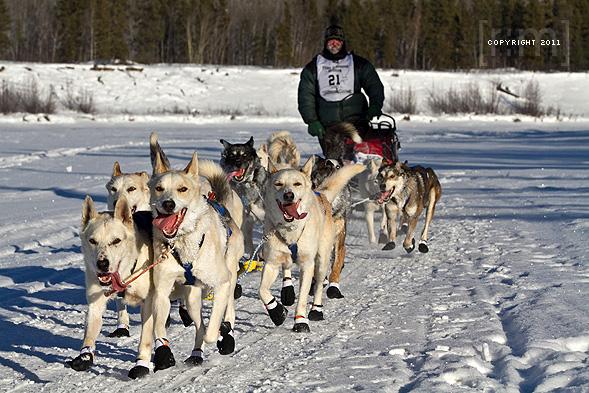 Yukon Quest 2011