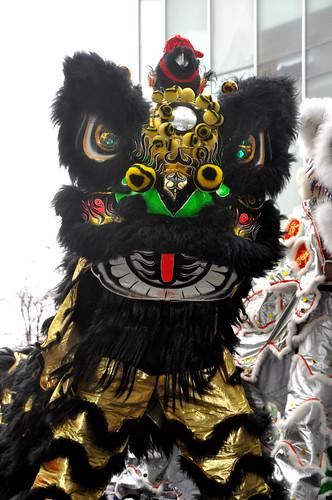 Black Lion Dancer