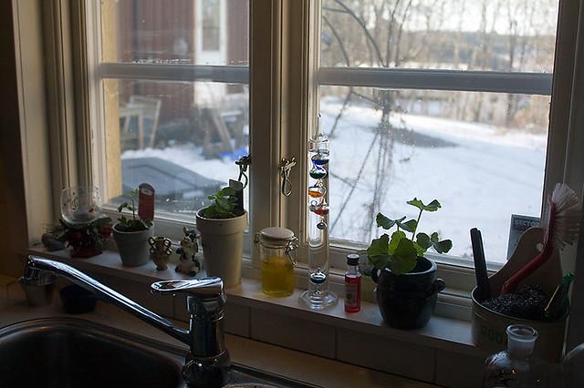 Köks fönstret