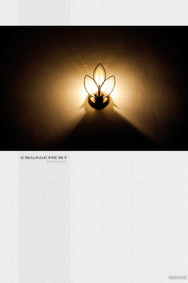 20110115bookcover