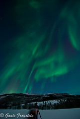 DSC_0035.jpg (Gaute Froystein Photography) Tags: camera blue winter light sky white mountain snow cold color green nature field norway night clouds circle skyscape stars landscape solar norge photo nikon flickr glare photographer purple shot forrest awesome north peak aurora flare fields polar peaks capture northernlights auroraborealis bod borealis nordlys colums d80 bodoe phenomen