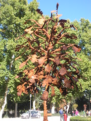 Jose G. Onieva -  Quercus pyrenaica (sftrajan) Tags: madrid autumn sculpture spain october steel exhibit escultura espana otoo espagne spanien spagna 2010 parquedelretiro espanya parquedelbuenretiro avenidademejico retiropark jardinesdelbuenretiro quercuspyrenaica elparquedelretiro jardinesdelretiro paseodemxico josegonieva sonieva parquerealdobomretiro