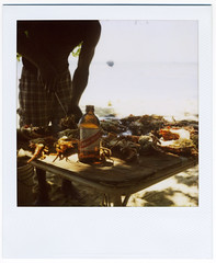 and that's all i need. (cowe) Tags: film beer polaroid sx70 butter jamaica 600 garlic lobster negril redstripe privateisland rockhousehotel notabigdeal b3srockhouse2011