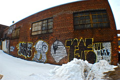 Swamp Faro (Wires In The Walls) Tags: winter snow streetart brooklyn faro graffiti brickwall williamsburg adhd outhere 2011 swampdonkey beardedmummy