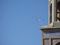 Birds flying to the tower (devinshire) Tags: travel october iran shiraz 2009 mosques nasirolmolk