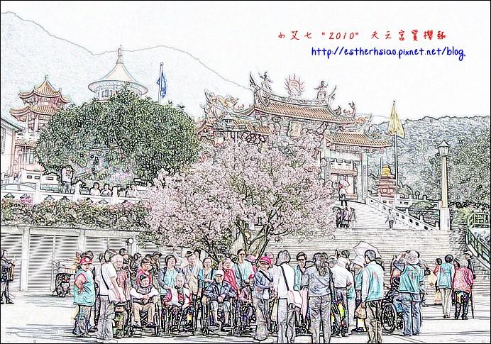 62 團體課櫻花樹下合照