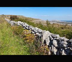 Stone Wall by MPOBrien