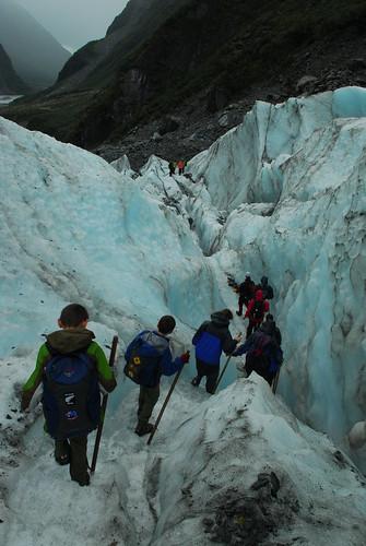 Fox Glacier 2 140