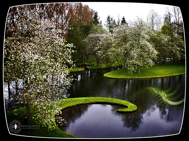 In the Garden of Cosmic Speculation