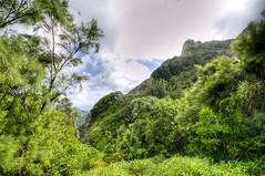 (Per Erik Sviland) Tags: circle island hawaii nikon paradise tour oahu lookout erik pali per hdr d300 pererik sviland sqbbe pereriksviland