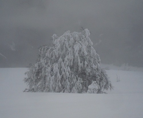 Schnee Sk 4