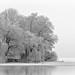 #291 Eiszeit (Winter_20110131_DSC2485-Bearbeitet)