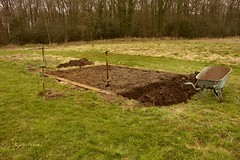Work in progress (joeke pieters) Tags: vegetablegarden moestuin 2776