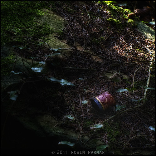 Myths of the New Forest: Detritus #28798
