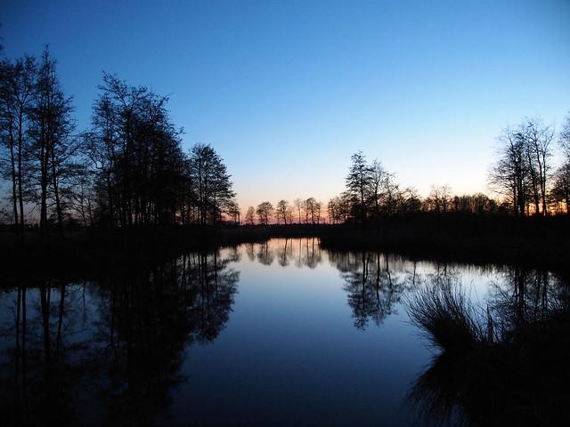 Avond wandeling in Twiske ( Maart )