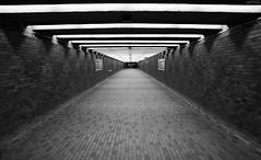Bare Codes (dzpixel) Tags: urban white black underground code bare tunnel sum