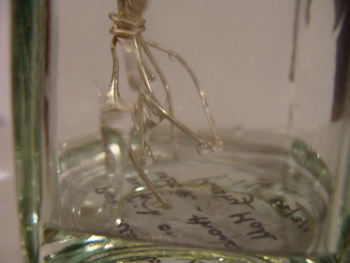 Jar No 81 close up 03