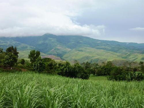 Negros -Bacolod-Savador-San Carlos (29)