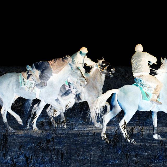 Buzkashi Horse game invert