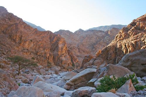 Sinai - Hiking