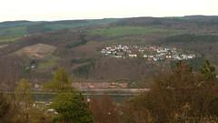 Igel (Cary Greisch) Tags: germany geotagged deu rheinlandpfalz lieschen wasserliesch carygreisch geo:lat=4970119900 geo:lon=653548800