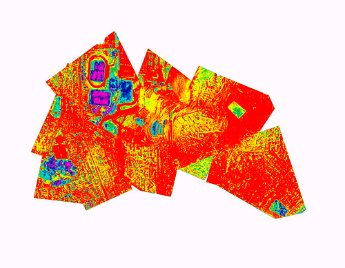 Public Laboratory balloon NDVI of Lima in false color