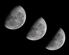 waning gibbous moon to a last quarter moon (dcysurfer / Dave Young) Tags: archimedes aristoteles astrophotography burnsnight canoneos50d catherina copernicus crater cyrillus eudoxus juliuscaesar lastquarter luna lunarmaria moon newzealand nearsideofthemoon nightsky plato posidonius southernhemisphere space terminator theophilus timelapse tycho waninggibbousmoon ef100400mmf4556lisusm ccby40 dcysurfer