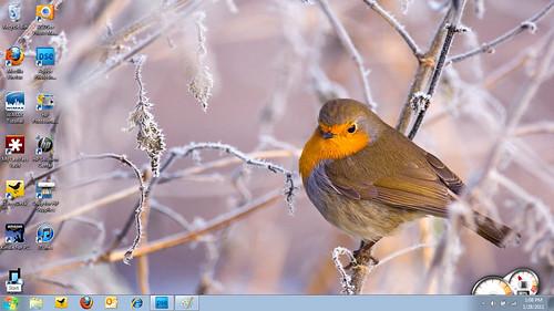 2011-01-29 Desktop
