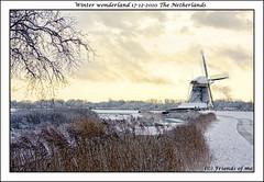 Windmill in winterwonderland of the Netherlands (drbob97) Tags: from snow netherlands lot mygearandme mygearandmepremium mygearandmebronze mygearandmesilver mygearandmegold mygearandmeplatinum mygearandmediamond reetings windmillinwinterwonderlandofthenetherlands withaverynicelightingskymolenmolensdrbobdrbob97snowwinterwonderlandsneeuwmolenmolenswindmillsluchtlichtgeelyellowcanonstunningawesometreedepthfieldlandscapehistorymonumentnederlandhollandshollanddutchkoudcoldfreezefri aboveandbeyondlevel1