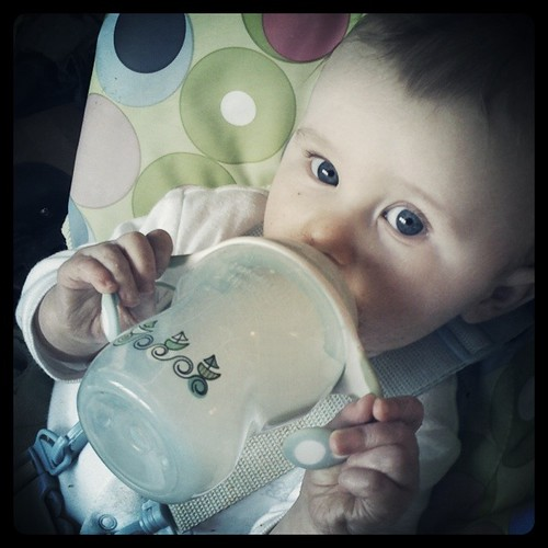Wordless Wednesday - Milk