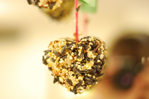 Bird Seed Cakes