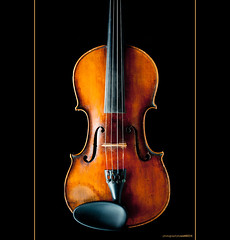Violin Strings (Old One Eye) Tags: music order notes violin instrument string strings thin lowest thick highest  gdae ourdailychallenge