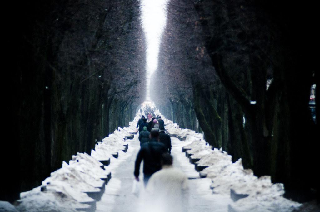 Laisvės al. žiemą | Freedom avenue, Kaunas, Lithuania