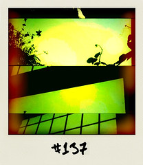 "#DailyPolaroid of 1-2-11 #137 • <a style=""font-size:0.8em;"" href=""http://www.flickr.com/photos/47939785@N05/5416216284/"" target=""_blank"">View on Flickr</a>"