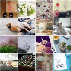 My inspiration. This Weekend Favorites (sunniest) Tags: flowers favorite inspiration feet cup nature cookies bike collage breakfast cat fdsflickrtoys shoes child floor heart mosaic favorites cups favourites favourite