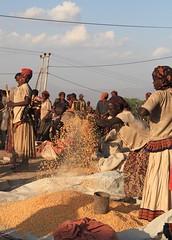 Konso Market, Ethiopia (Sekitar) Tags: africa travel portrait people woman work evening corn market african traditional culture tribal mais tribes adventures tradition anthropologie ethiopia tribe ethnic trade tribo pasar indigenous afrique ethnology tribu ethiopian omo etiopia etnic ethiopie ethnologie sekitar konso etiopija ethnie ethnies  etiopien  southethiopia konzo  athiopien ethiopie etiopia etiopia