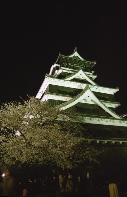 熊本城と夜桜のフリー写真素材