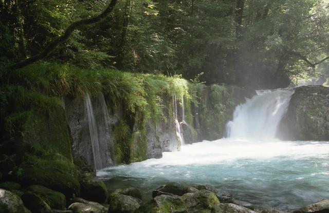森の滝のフリー写真素材