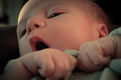 Martino (votredame) Tags: boy kid child newborn bebe growing bambino neonato