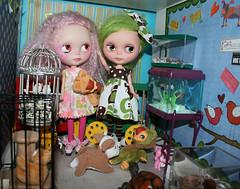 the angels visit the pet shoppe