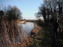 Mentmore walk (goreckidawn) Tags: sky green nature beautiful walking paul outdoors dawn open path walk space buckinghamshire adventure explore journey fields paths