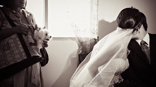 kuei_wedding_0567.jpg