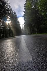 Hit the Road (Kay Gaensler) Tags: road trip summer vacation sun lake wet canon germany geotagged bayern deutschland bavaria eos sommer kay deu hdr reise 2010 nass hintersee ramsau photomatix strase 40d gnsler gaensler wwwenslerde antenbichl geo:lat=4760546833 geo:lon=1285592900