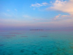 God's handwriting (ibraaahim) Tags: maldives velidhoo