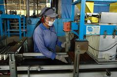 DSC_0411 (mitrataj) Tags: paper sumatra indonesia april redd acacia papermill deforestation riau pulpwood riauandalanpulppaper