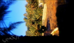 C360_2011-02-04 16-53-16 (MagicPAD - الكعبي) Tags: uae الإمارات الجزيرة الظاهر ناصر الكعبي الخطوة مصح محضة