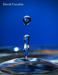 Drops (David Cucaln) Tags: macro water 35mm drops agua olympus gotas splash aigua highspeed fineartphotography altavelocidad 2011 gotes salpicaduras cucalon top20blue20 davidcucalon