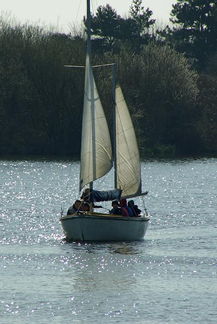 Sunlight on the Sails