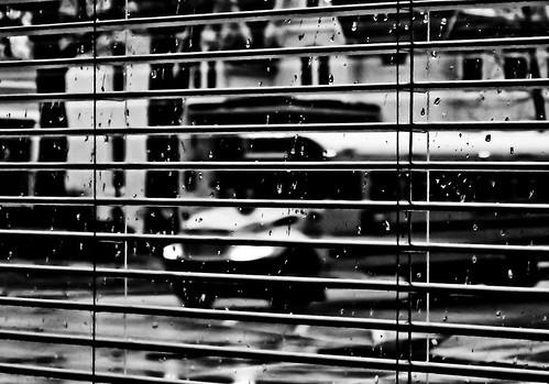 street-wet_(6_of_20)