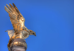 Where Eagles Dare (TheFella) Tags: uk greatbritain blue england sky slr london westminster statue thames digital photoshop canon eos gold photo high europe dynamic eagle unitedkingdom capital worldwari photograph processing gb dslr range riverthames hdr highdynamicrange raf memoria goldeneagle victoriaembankment 1923 postprocessing 500d royalairforce photomatix williamreiddick royalairforcememorial sirreginaldblomfield greatwars